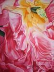 Art floral - Pastel : Fabuleuse Pivoine